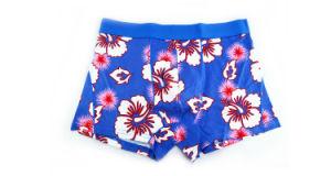 95%Cotton/5%Pendex Men Underwear Boxers Brief Fashion for 232 pictures & photos