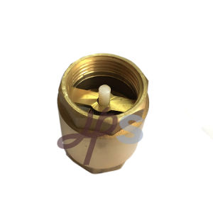 Brass Non Return Vertical Spring Check Valve with Plastic Core pictures & photos