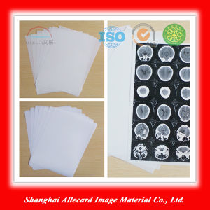 Pet Material Inkjet Printng Film-White pictures & photos
