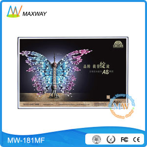 18.5 Inch Open Frame LCD Monitor with 16: 9 Resolution 1366X768 (MW-181MF) pictures & photos