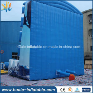 Customized Inflatable Rock Climbing Wall Inflatable Sport Game for Sale pictures & photos
