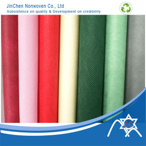 PP Nonwoven Fabric for Pantone Card pictures & photos