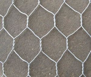 PVC Coated Hexagonal Wire Mesh / Hexagonal Wire Netting Yaqi Supply pictures & photos