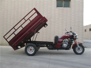Cargo Tricycle, Water Cooling 150cc, 200cc, 250cc, Three Wheel Motorcycle pictures & photos