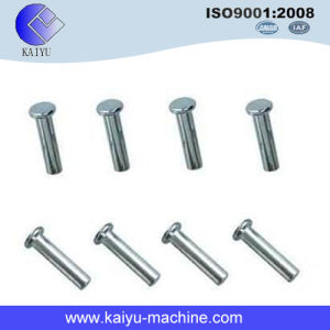 China Factory Provide Rivet / Coil Nail / Fastener pictures & photos