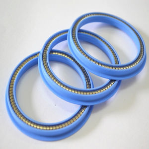 Stainless Steel PTFE Spring Energized Seals pictures & photos