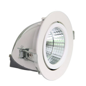 LED Gimble Down Light with High Quality COB LED pictures & photos