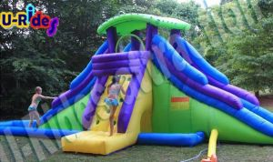 6m Long Mix Inflatable Slide and Pool pictures & photos