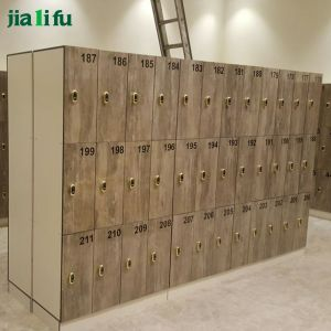 Jialifu Factory Direct Sale HPL Locker Electronic Lock pictures & photos