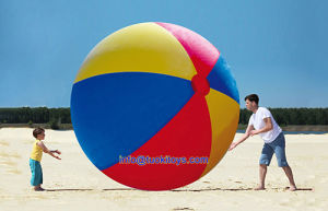 Large Inflatalbe Beach Ball and Balloon (TK-029) pictures & photos
