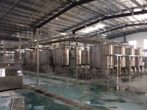 Full Automatic 3000L/H Dairy Products Processing Plant pictures & photos