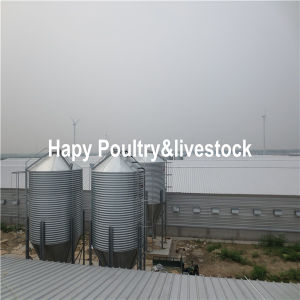 Steel Building Cattle Farm/Poultry Farm/Pig Farm pictures & photos