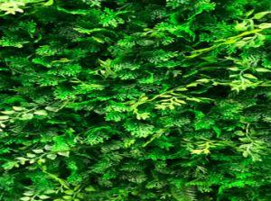 DIY Double Color Garden Artificial Leaf Hedge (MW16043) pictures & photos