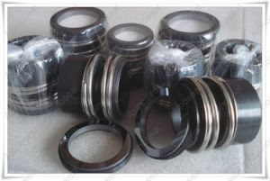 Mechanical Seals Type as-Emg1 to Replace Burgmann Mg1 pictures & photos