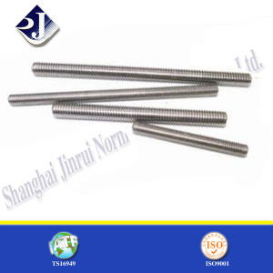 Stainless Steel 304 316 Grade Ground Screw pictures & photos