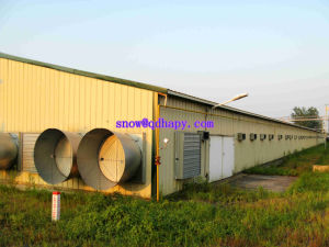 Automatic Livestock Equipment for Broilers with Prefab Shed Construction with Free Design pictures & photos