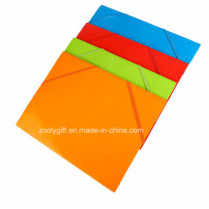 A4 Index Divider Twin Pocket Folders Presentation Paper File pictures & photos