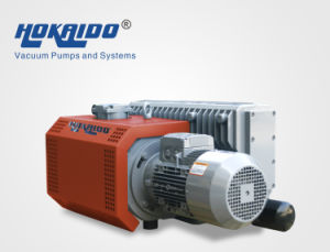 China Oil Rotary Vane Vacuum Pump (RH0200)