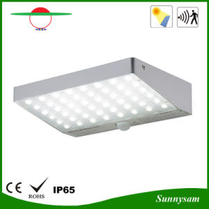 New Design Hight Bright Garden Light 48 LED Solar Light pictures & photos