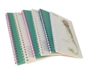 100% Factory Price Custom Logo Printed Notebook / Exercise Book pictures & photos