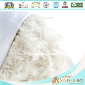 Luxury Pure Cotton Casing White Goose Duck Filling Hotel Pillow pictures & photos