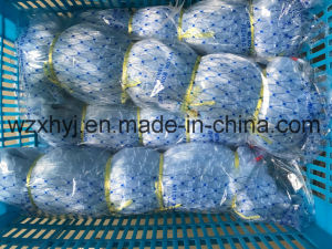 "0.60mm X 5 1/4"" X 70MD X 200yds Nylon Monofilament Fishing Net pictures & photos"