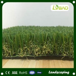 Artificial Grass, Landscape Grass pictures & photos