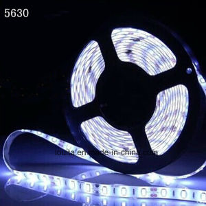 Fashionable Strip 19.2W/M SMD 5630 LED Strip Lighting pictures & photos