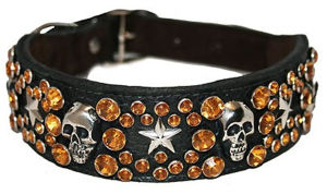 Star and Skull Big Dog Collar, Leather Pet Collar Supply pictures & photos