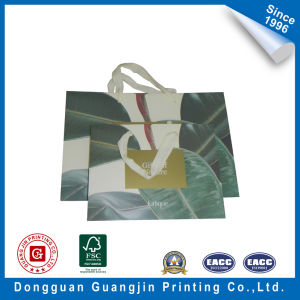 Printed Paper Bag The Rubber Surface Flow Bag Shopping Bag pictures & photos