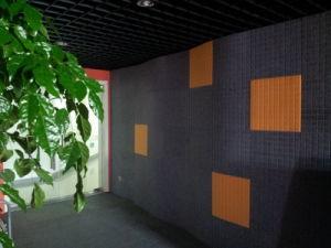 E0-Class Environmental Polyester Fiber Acoustic Wall Panel pictures & photos
