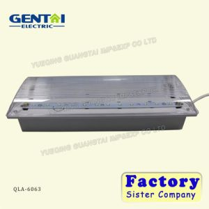 Ni-CD Battery Operated T5 Fluorescent Tube Bulkhead Emergency Light pictures & photos