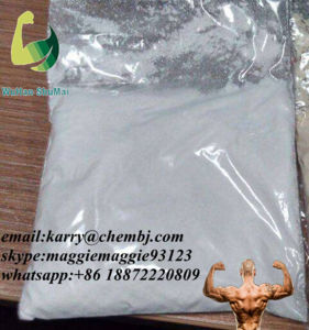 Raw Material Powder Guanosine with Competitive Price CAS: 118-00-3 pictures & photos