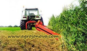 Tractor 3-Point Heavy Verge Flail Mower Agf with Ce