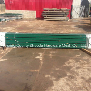 Premium Green Powder Coated Mesh Security Fence pictures & photos