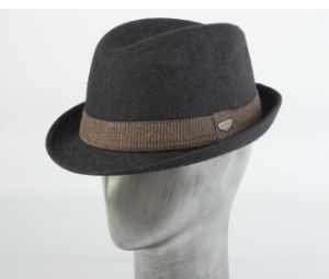 Stripe Print Wool Fedora pictures & photos