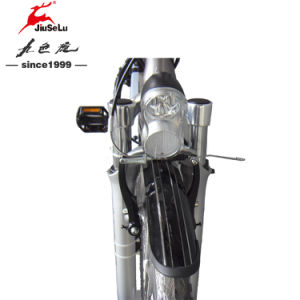 700C Aluminum Alloy 250W Brushless Motor Electric City Bicycle (JSL034B-4) pictures & photos