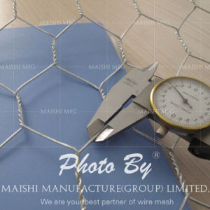 Hexagonal Wire Mesh /Hexagonal Wire Netting for Fish/Chicken Cage pictures & photos