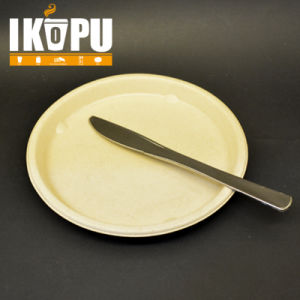 Hot Sale Disposable Plastic Cutlery Set pictures & photos