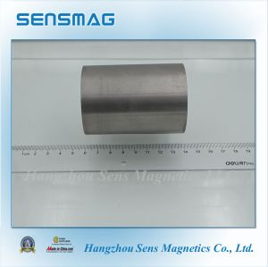 Customzied High Quality Permanent AlNiCo Magnet pictures & photos