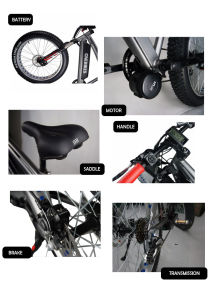 Fat Tire 48V 750W Bafang MID Drive Motor Electric Bike pictures & photos