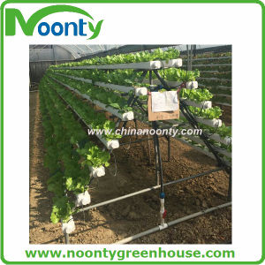 Nft Small Home and Garden Hydroponics System pictures & photos