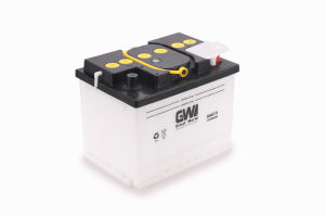 DIN Standard Dry Charged DIN60 Car Battery pictures & photos