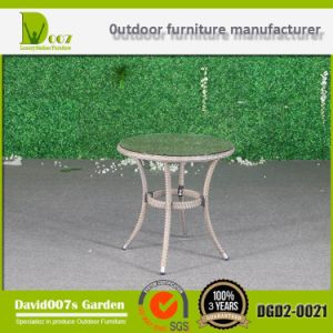 Furniture Rattan Style Round Dining Set for Garden pictures & photos