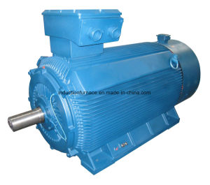 Electric Three Phase Asynchronous Squirrel-Cage Induction Motors Induction Motor pictures & photos