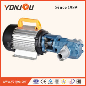Portable Gear Oil Electrical Pump (WCB) pictures & photos