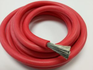 Jg Silicone Insulated Cable 6.0mm2 with Dw20 pictures & photos