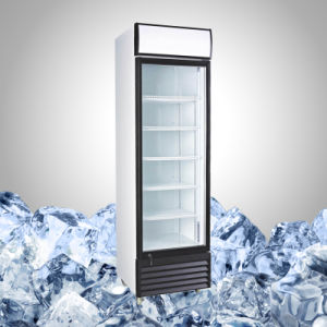 Single Glass Door Cooler for Beer and Beverage pictures & photos