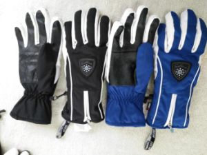 Adult Ski Glove/Adult Winter Glove/Winter Bike Glove/ Bike Glove/Detox Glove/Eco Finish Glove/Oekotex Glove/Touch Screen Glove/Waterproof Glove/ Zipper Glove pictures & photos
