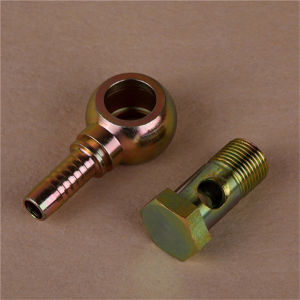 Hose Fitting - British Standard - Bsp Banjo - P72011 pictures & photos